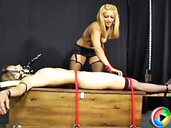 Maxine X teases helpless bound Belle before mounting her dildo strapped face