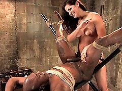Gorgeous Dominatrix trains slave to worship pussy